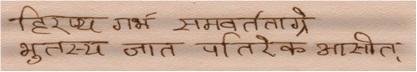 Hiranyagarbha Sukta 2