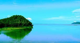 Assam1