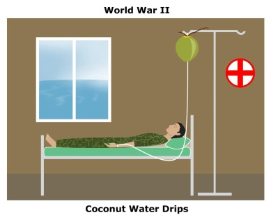 Coconut 15