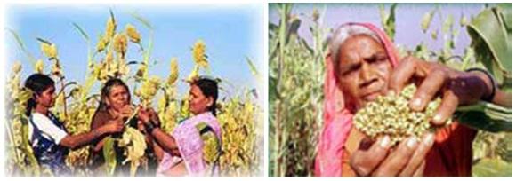 Rural Women 4