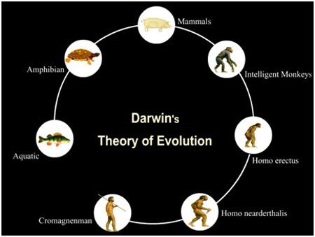 Charles Darwin 10