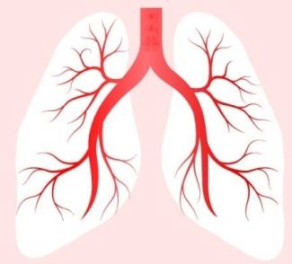 Pneumonia Day 2