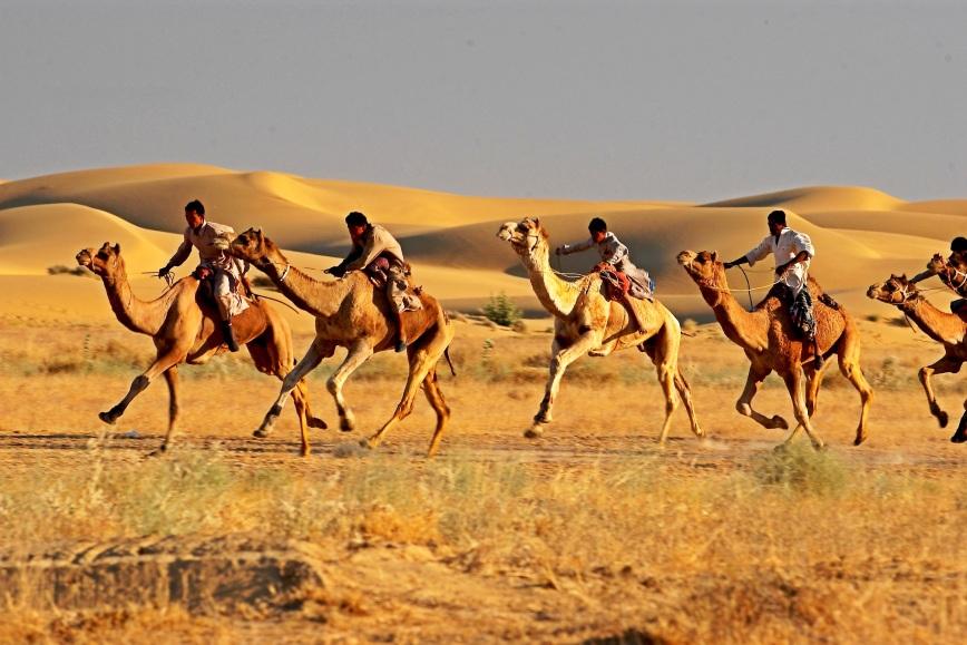 Jaisalmer 8