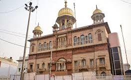 Kashmiri 8