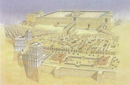 King Solomon 2