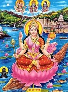 Narmada 5