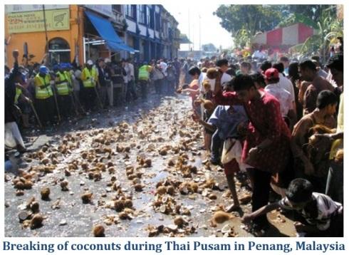 Thai Pusam 4